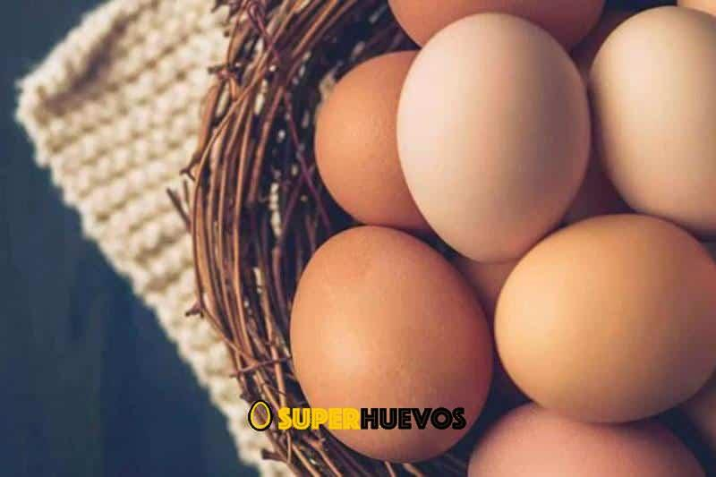 10 beneficios del huevo
