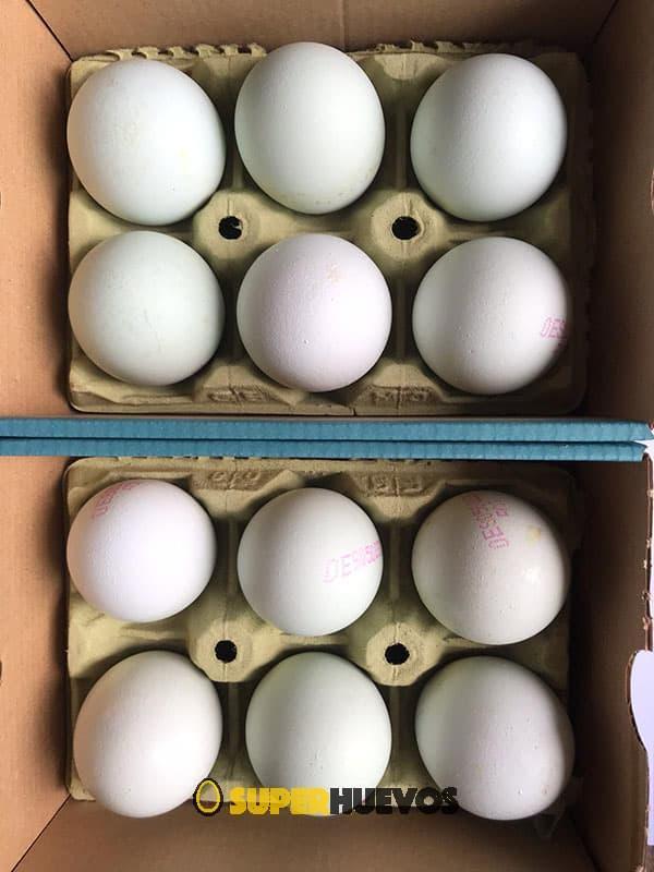 comprar huevos azules