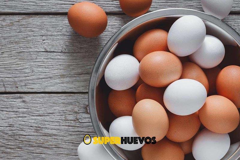 huevos blancos o marrones y diferencias